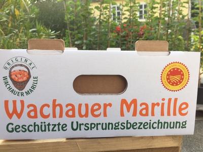Marillen im Karton 2